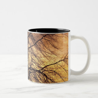 Silhouette of a Tree with Pink and Orange Sky Two-Tone Coffee Mug