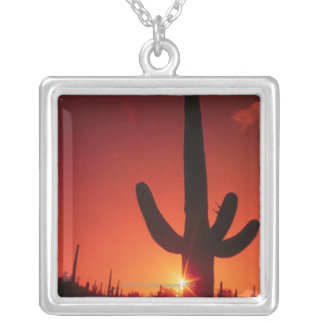 Silhouette of cactus at dusk , Saguaro National Silver Plated Necklace