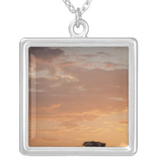 Silhouette of tree on plain, Masai Mara Silver Plated Necklace
