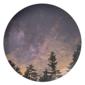 Silhouette of Trees at Night Plate
