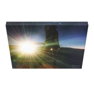 Silhouette Photo Wall Canvas