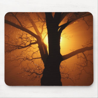Silhouette Tree in Sunset Mouse Pad