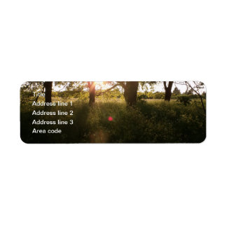 Silhouette Trees & Sunlight Wedding Address Labels
