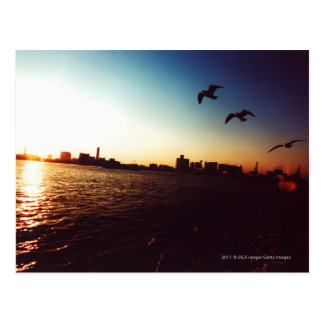 Silhouetted Tokyo Bay skyline at sunset Postcard