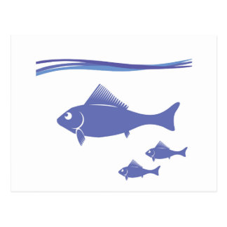 Silhouettes of Fish Postcard