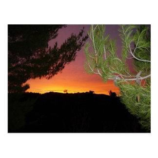 SIlicon Valley Sunrise Postcard