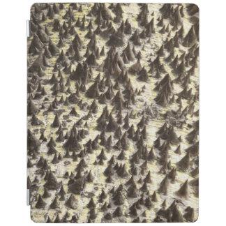 Silk Floss Tree iPad Cover