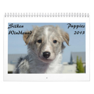 Silken Windhound Puppies 2013 Calendars
