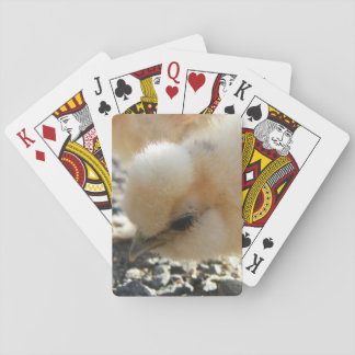 Silkie Chick Poker Card