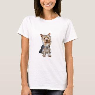 Silky Terrier (B) T-Shirt