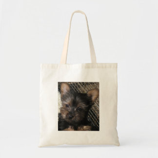 Silky Terriers A dog For All Reasons Tote Bag