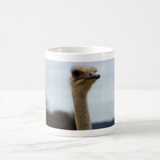 Silly Bird Photo   Ostrich Face Wildlife Photo Coffee Mug