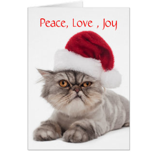 Silly Cranky Cat with Santa Hat Christmas card