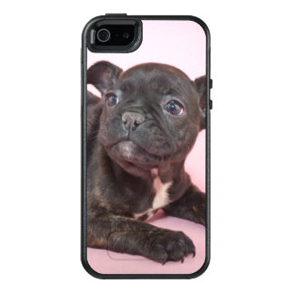 Silly French Bulldog Puppy Ready To Play OtterBox iPhone 5/5s/SE Case