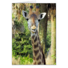 Silly Giraffe Birthday Card (For Children)