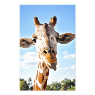 Silly Giraffe Stationery