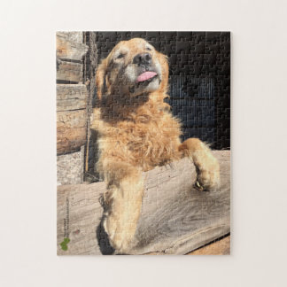 Silly Golden Retriever Photograph Jigsaw Puzzle