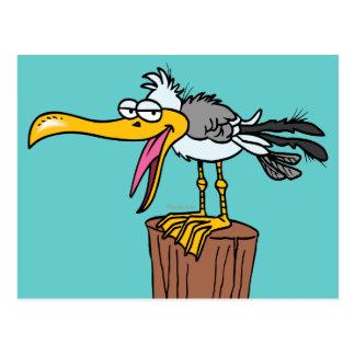 silly seagull cartoon postcard