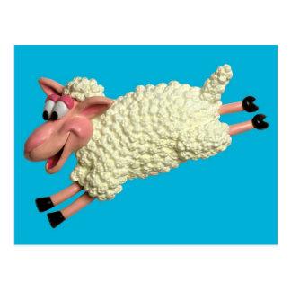 Silly Sheep Postcard