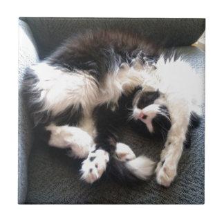 silly sleepy cat tile