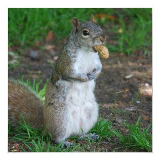 """Silly Squirrel 5.25"""" Square Invitation Card"""
