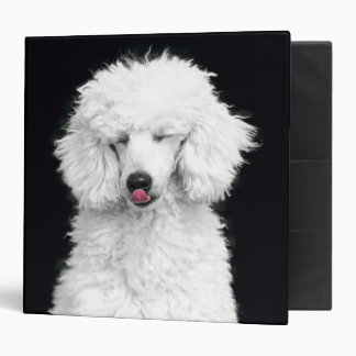 Silly White Poodle Binder