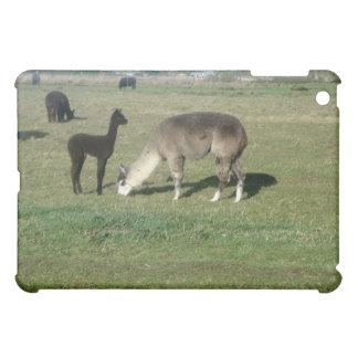 Silver alpaca and her cria iPad mini cover