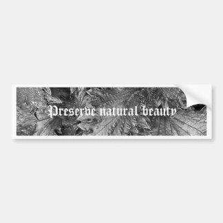 Silver Beauty Bumper Sticker