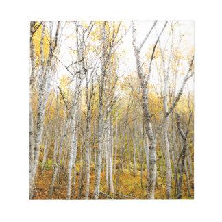 Silver Birches Notepad