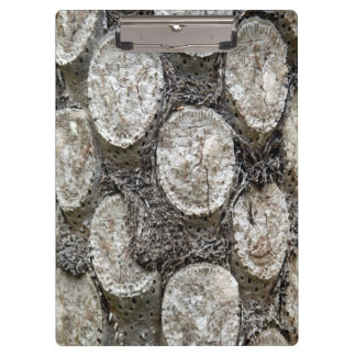 Silver Fern Tree Clipboard