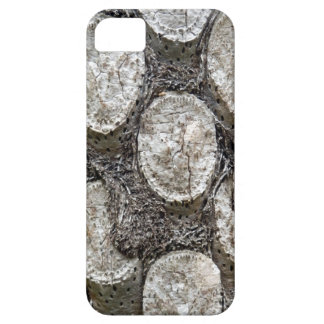 Silver Fern Tree iPhone SE+5/5S Case