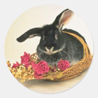 Silver fox rabbit named Boris flowers Round Sticker