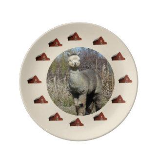 Silver Grey Alpaca Plate