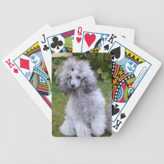 Silver Grey Poodle Dog Playing Cards