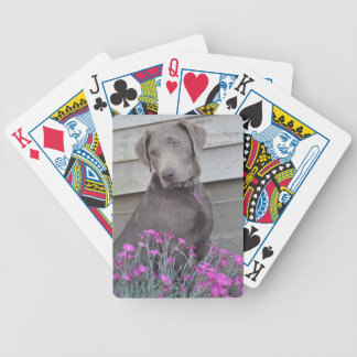 Silver Labradors Bicycle Playing Cards