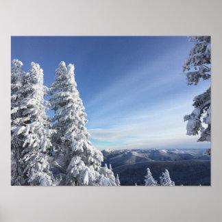 Silver Mountain Poster