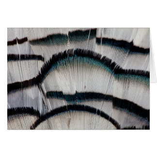 Silver Pheasant feathers Card