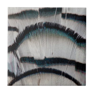 Silver Pheasant feathers Tile