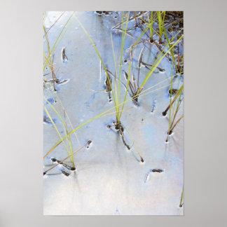 Silver pond print