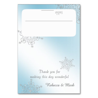 Silver Snowflakes and Ice Blue Seating Card