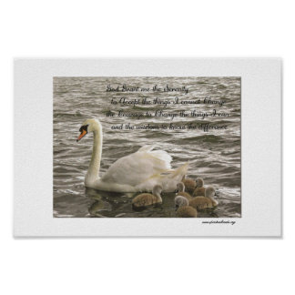 silver swans serenity prayer poster