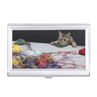 Silver tabby cat climbing over edge of table business card holders