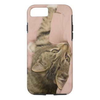 Silver tabby stretched out on bedspread iPhone 7 case