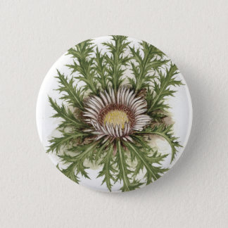 Silver Thistle Collection 2 Inch Round Button