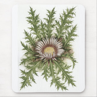 Silver Thistle Collection Mouse Pad