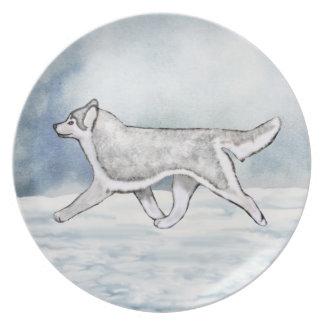 Silver & White Brown Eyed Siberian Husky Plate