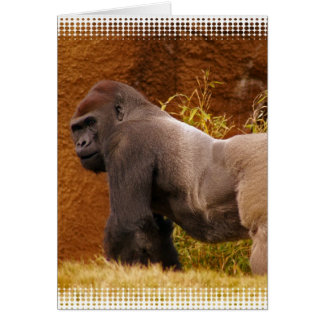 Silverback Gorilla Photo Greeting Card