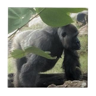 Silverback Gorilla Tile