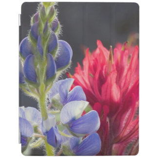 Silvery Lupine, Lavender Paintbrush iPad Cover