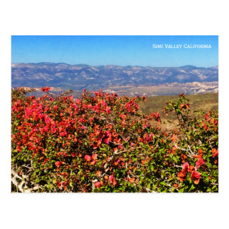 Simi Valley California Postcard